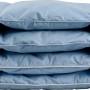 Детское пуховое одеяло «Серый гусенок». Детское одеяло гусиный пух . «Серафимовская Пушинка», Россия