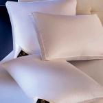 DOWN AROUND подушка мягкая пуховая гусиный сибирский пух. ТМ Brinkhaus (БринкХаус), Германия
